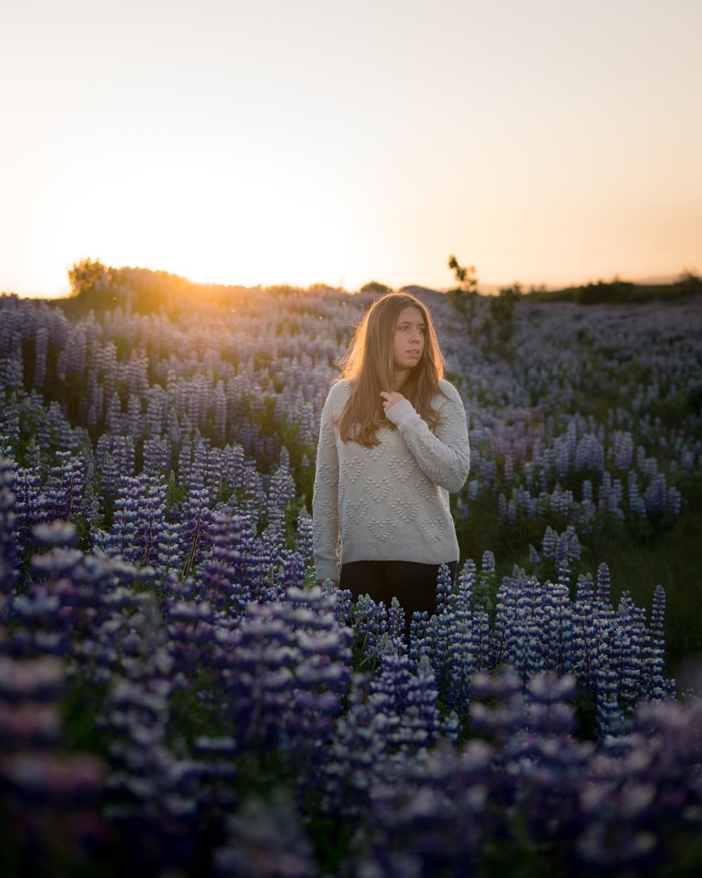 Fotoshooting im Lupinenfeld