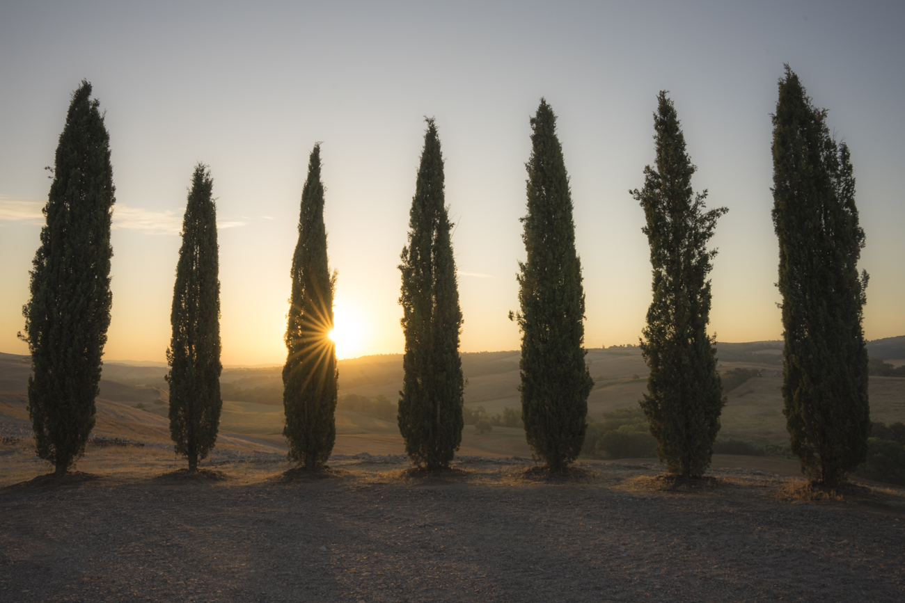 Im Val D'Orcia